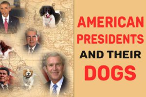 American Presidents And Their First Dogs