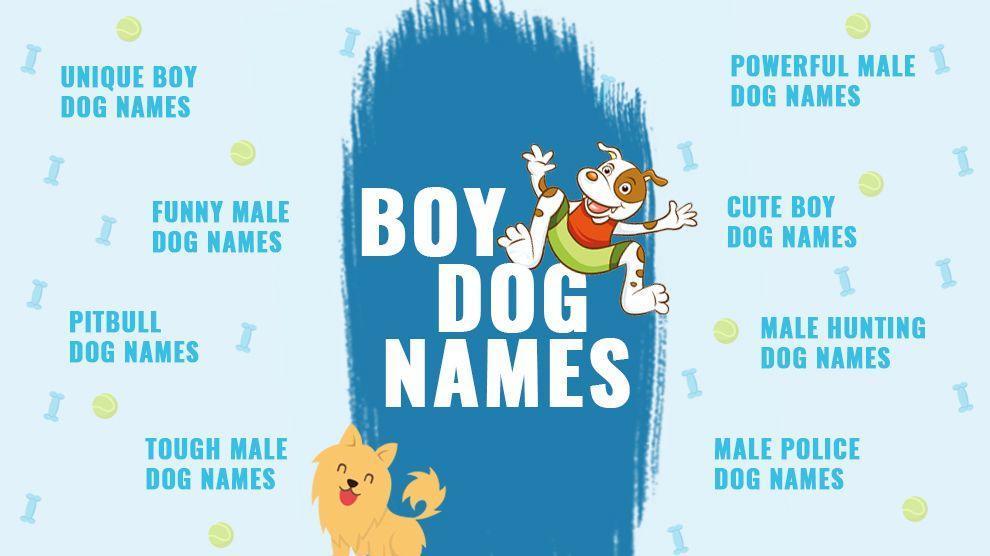 31++ Famous boy dog names information