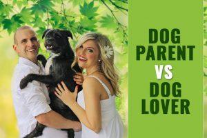 Dog Parent Vs. Dog Lover