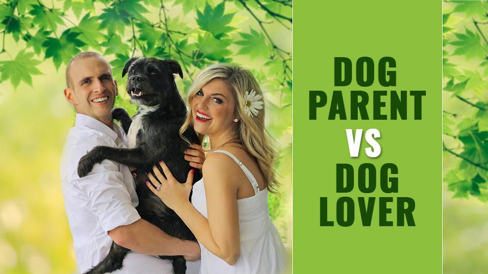 Dog Parent Vs. Dog Lover