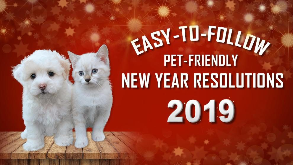 New Year Resolutions For Pet Lovers