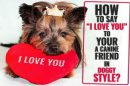"""Say """"I Love You"""" To Your Dog"""