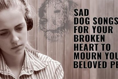 Sad Dog Songs