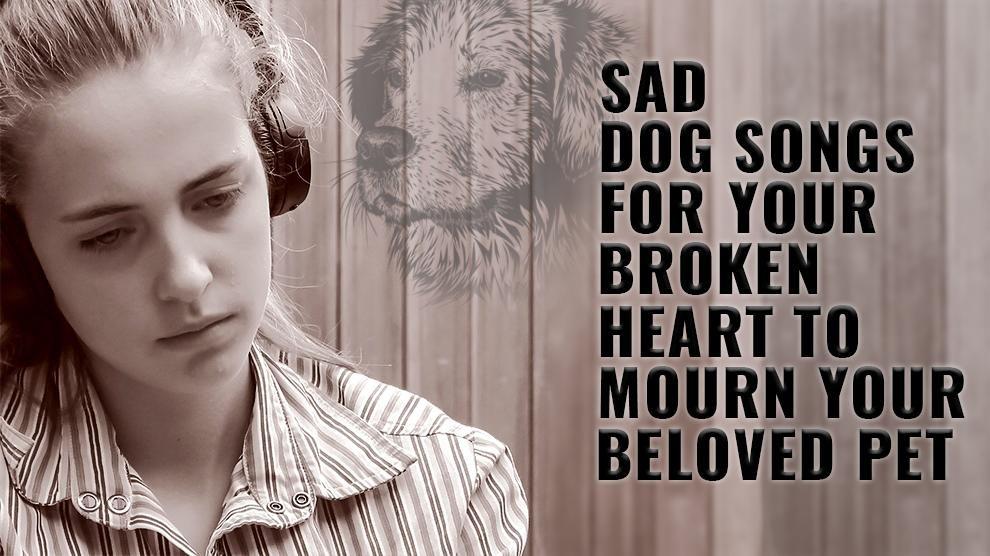 Sad Dog Songs