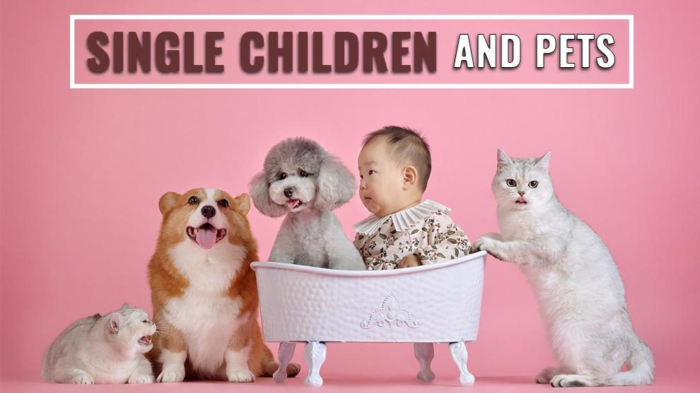 Single Children And Pets