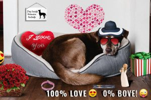 Valentine Gifts For Dogs