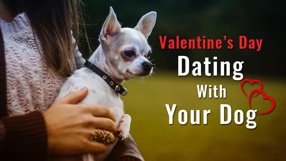 Valentine's Day Date With Your Dog