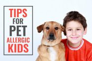 Infants Allergic To Dogs