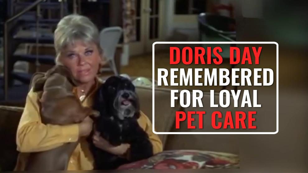 How Doris Day Made The World A Better Place For Pets?