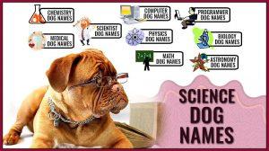 Science Dog Names