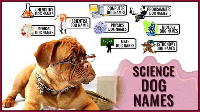 Science Dog Names