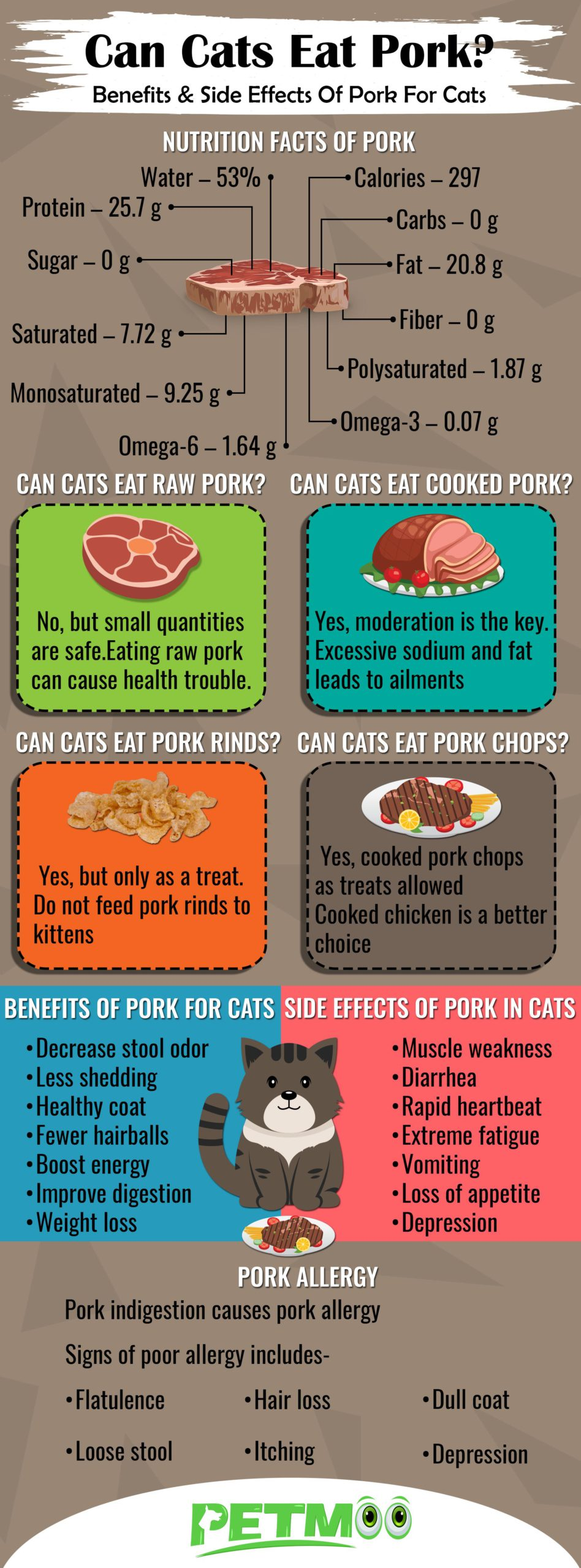 Can Cats Eat Pork Infographic