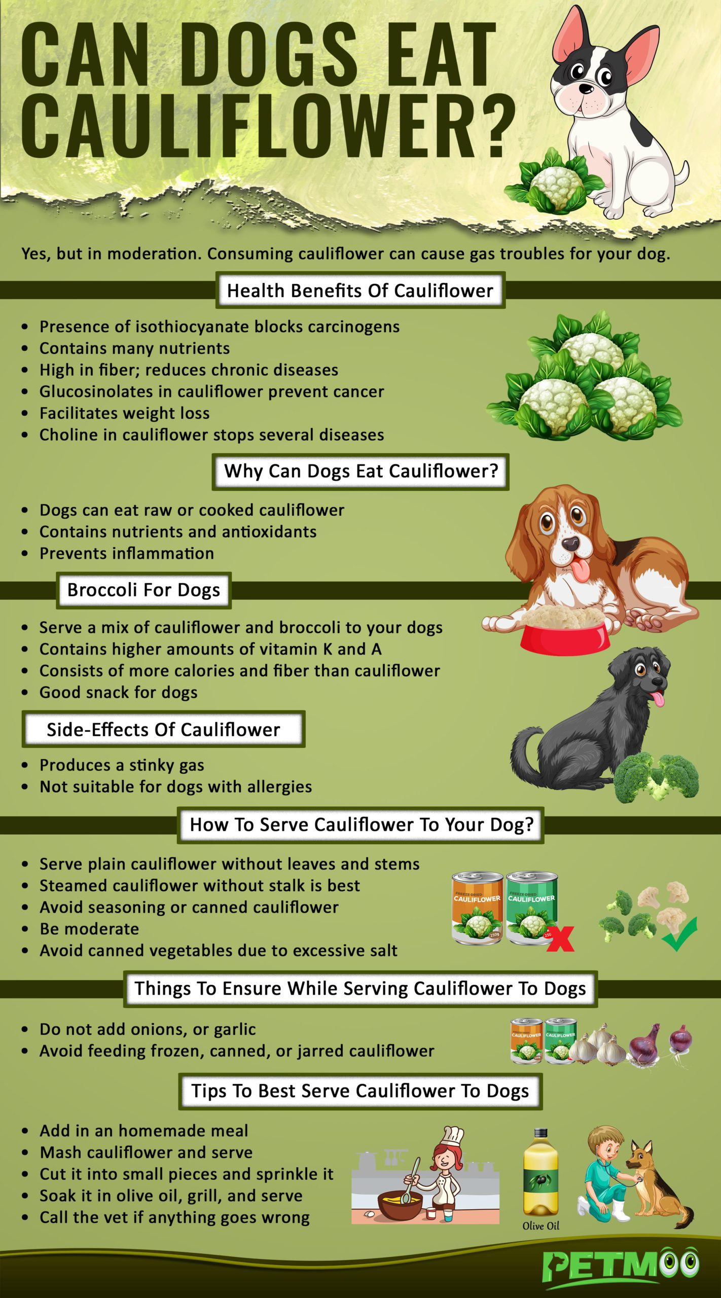 Can Dogs Eat Cauliflower Infographic