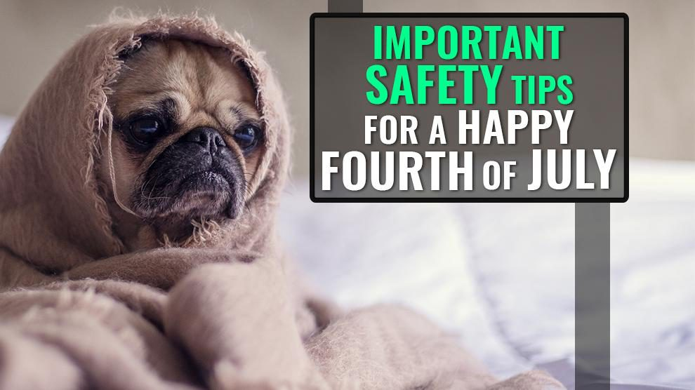 Important Safety Tips For A Happy Fourth of July