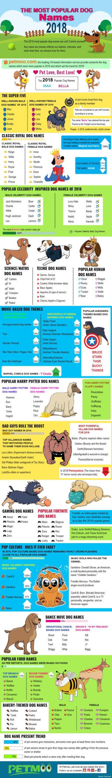 Most Poppular Dog Names