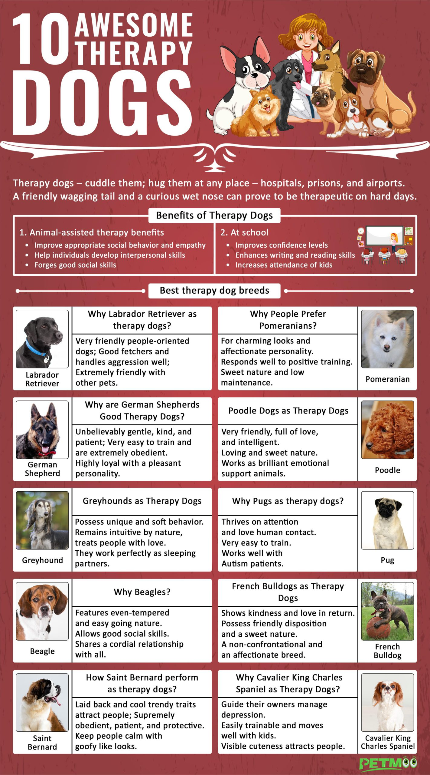 Therapy Dogs Infographic