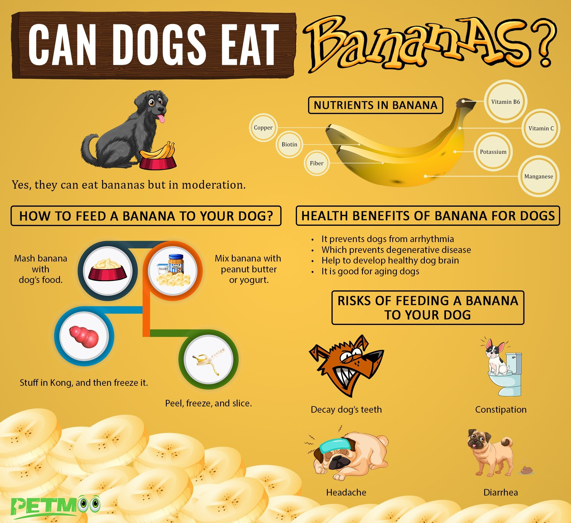 Can Dogs Eat Bananas? Are Bananas Safe