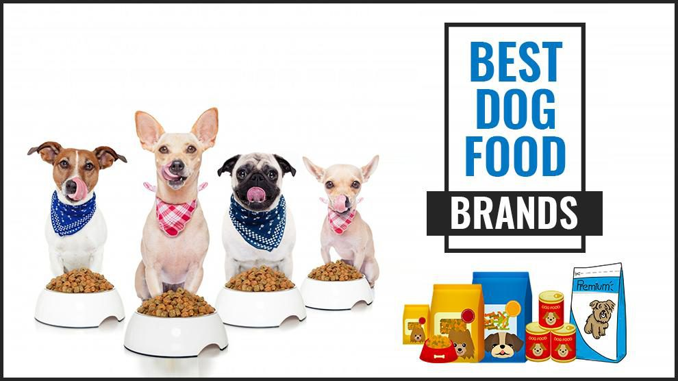 Best Dog Food Brands