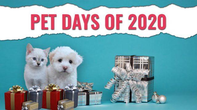 Pet Days Of 2020