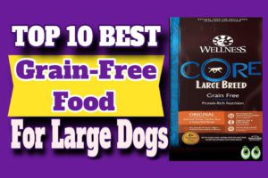 Best Grain-Free Food For Large Dogs