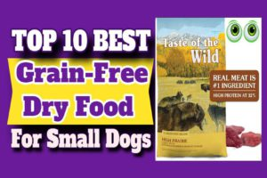Best Grain-Free Food For Small Dogs