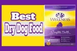 Best Dry Dog Foods