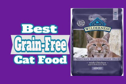 Best Grain-Free Cat Food