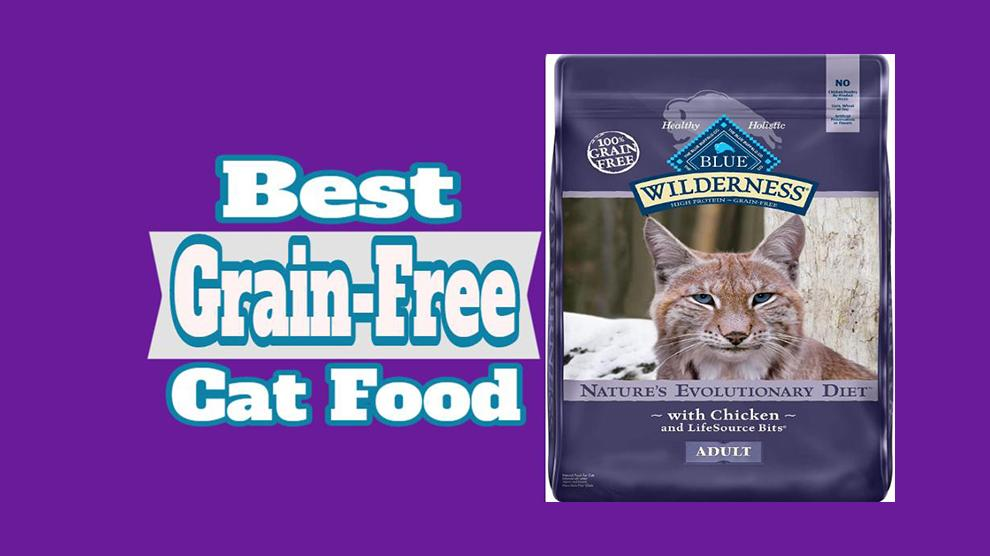 Best Grain-Free Cat Food