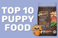 Top 10 Puppy Food