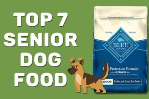 Top 7 Senior Dog Food