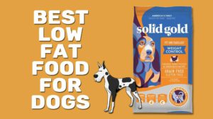 Best Low Fat Food For Dogs