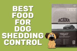 Best Food For Dog Shedding Control