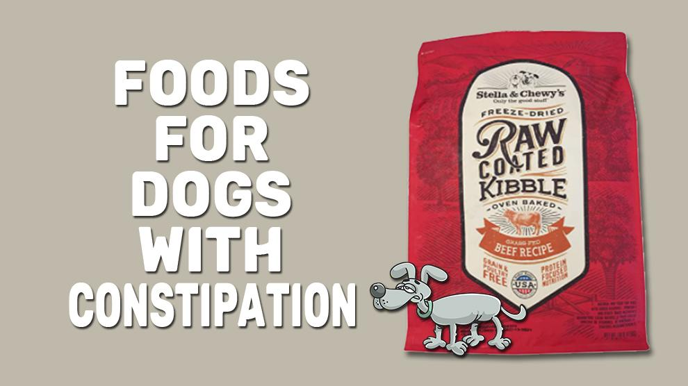 Foods For Dogs With Constipation