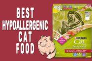 Best Hypoallergenic Cat Food
