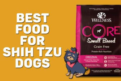 Best Food For Shih Tzu Dogs
