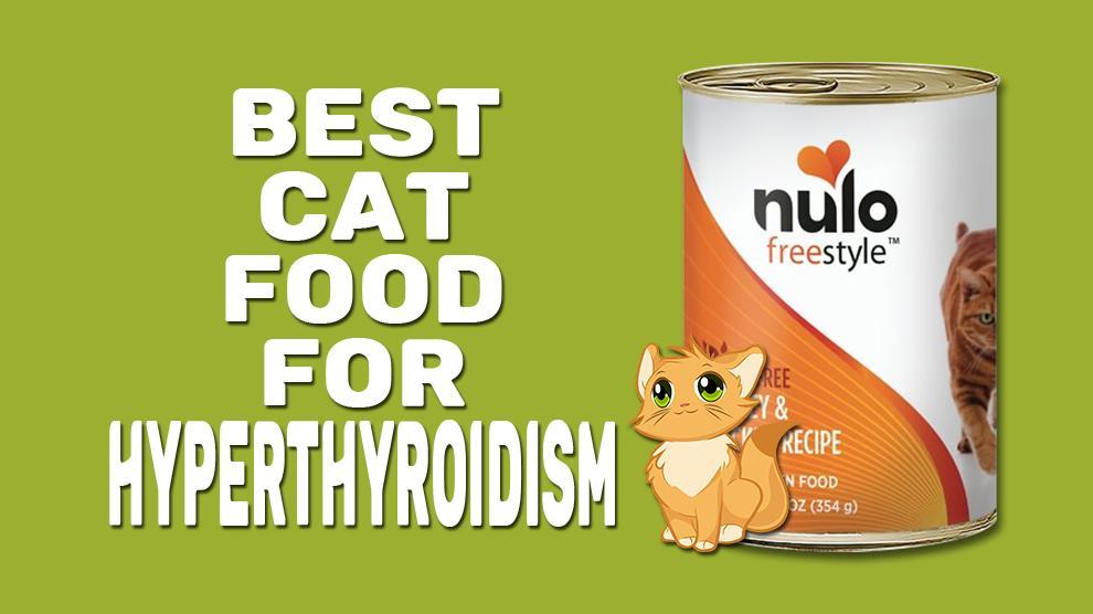 Best Cat Food For Hyperthyroidism