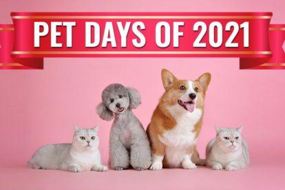 Pet Days Of 2021