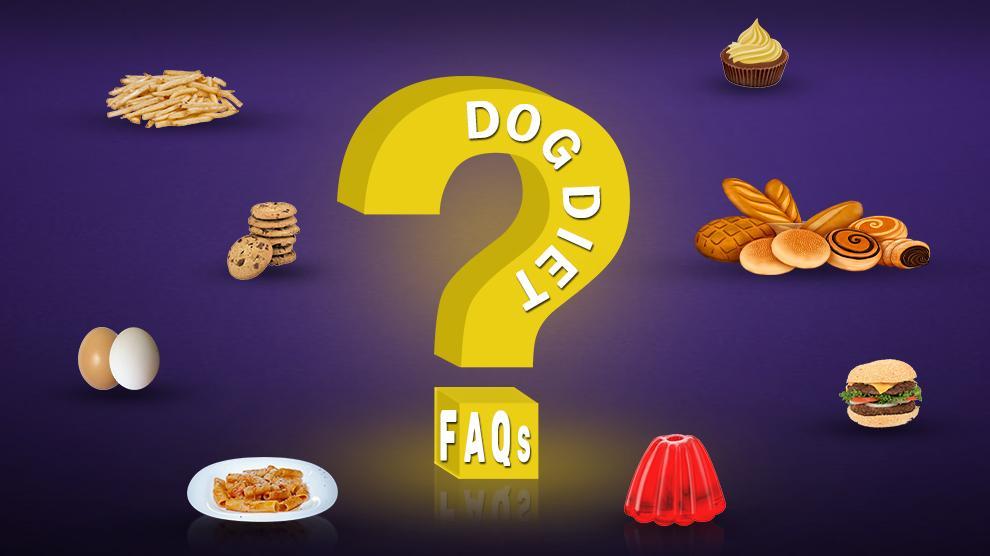 Dog Diet FAQs