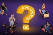 Dog Owner FAQs