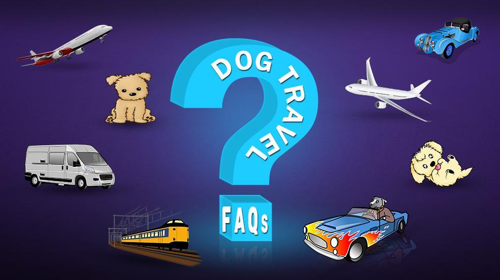 Dog Travel FAQs