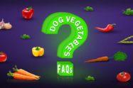 Dog Vegetables FAQs