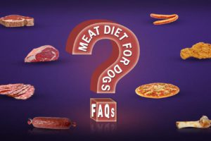 Meat Diet For Dogs FAQs