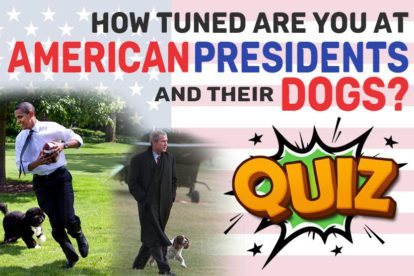 American Presidents And Their Dogs Quiz