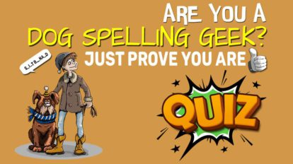 Are You A Dog Spelling Geek Prove You Are Quiz