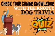 Dog Trivia Quiz