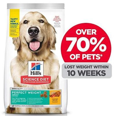 Best Dog Food For Weight Loss Petmoo