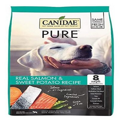 canidae-grain-free-pure-dry-dog-food