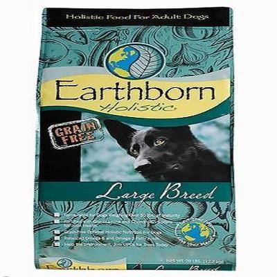 earthborn-holistic-large-breed-adult-grain-free-dog-food