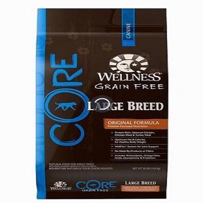wellness-core-grain-free-large-breed-dog-food
