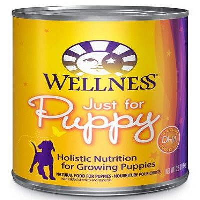 wellness-complete-health-natural-canned-dog-food-for-puppy-chicken-salmon